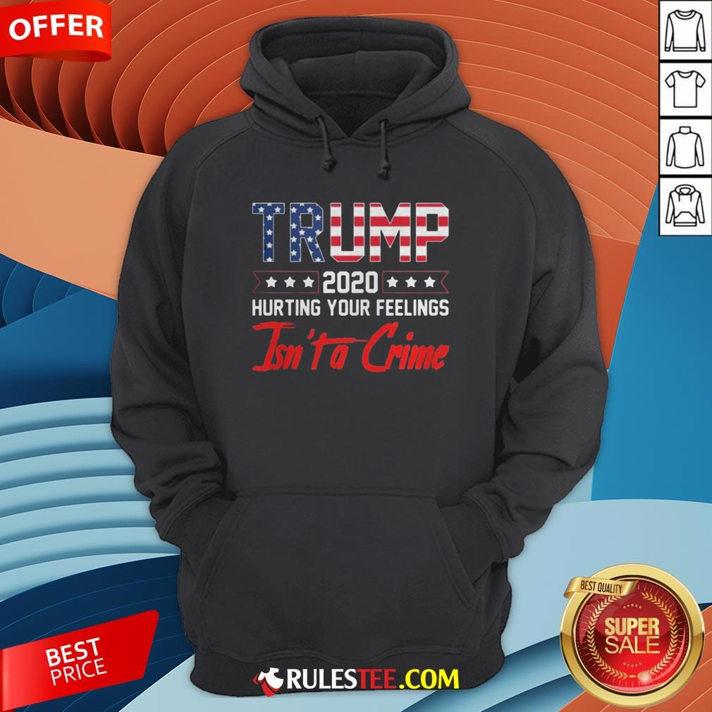Trump 2020 Hurting Your Feelings Isn't A Crime Hoodie - Design By Rulestee.com
