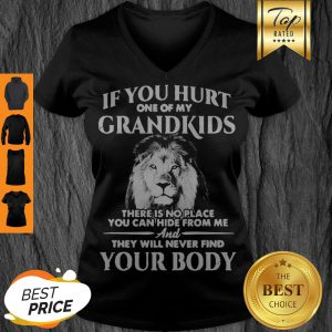 Lion If You Hurt One Of My Grandkids There Is No Place You Can Hide From Me V-neck