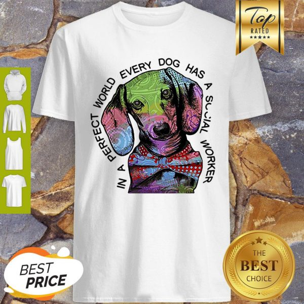 Dachshund In A Perfect World Every Dog Has A Social Worker Shirt