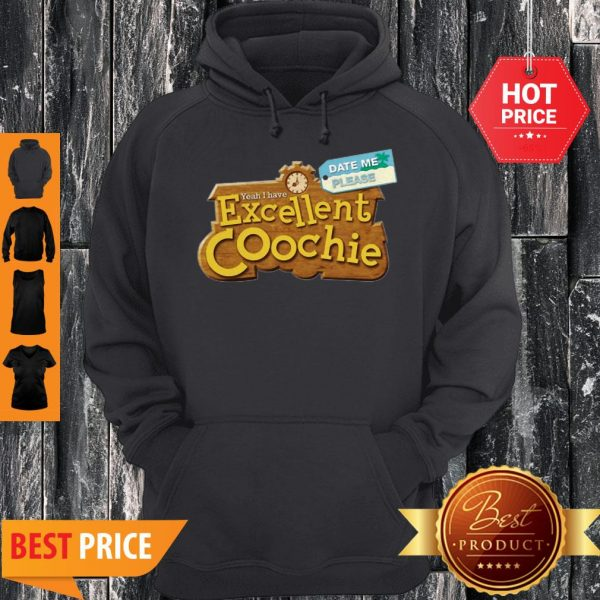 Date Me Please Yeah I Have Excellent Coochie Hoodie