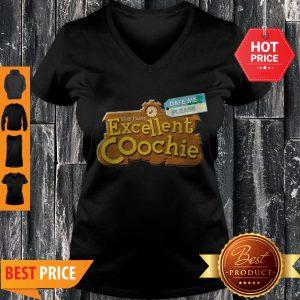 Date Me Please Yeah I Have Excellent Coochie V-neck