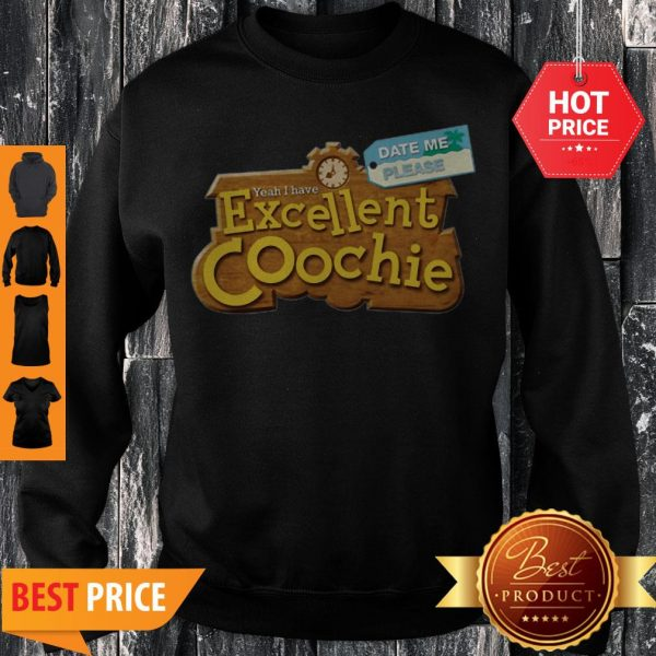 Date Me Please Yeah I Have Excellent Coochie Sweatshirt