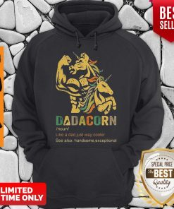 Dadacorn Like A Dad Just Way Cooler See Also Handsome Exceptional Hoodie
