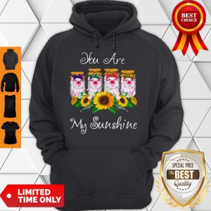 Official Pig You Are My Sunshine Hoodie