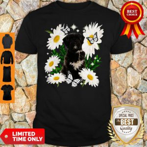 Official Tibetan Terrier Dog Daisy Flower Classic Shirt