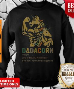Dadacorn Like A Dad Just Way Cooler See Also Handsome Exceptional Sweatshirt