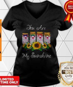 Official Pig You Are My Sunshine V-neck
