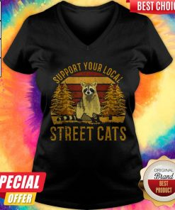 Support Your Local Street Cats Raccoon Sunset V-neck