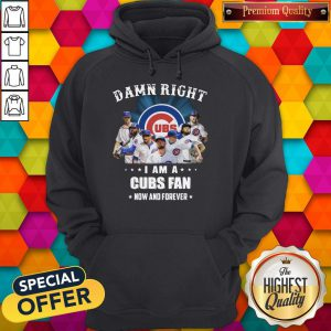 Damn Right I Am A Cubs Fan Now And Forever Hoodie