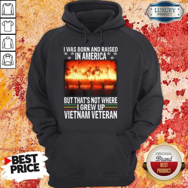 I Was Born And Raised In America But That's Not Where I Frew Up Vietnam Veteran Hoodie