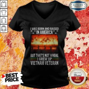 I Was Born And Raised In America But That's Not Where I Frew Up Vietnam Veteran V-neck