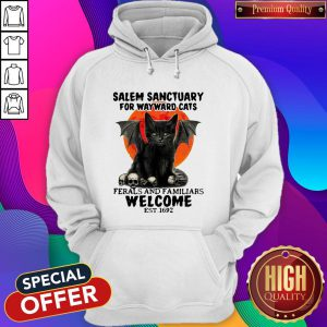 Salem Sanctuary For Wayward Cats Ferals And Familiars Welcome Est 1692 Blood Moon Hoodie