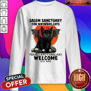 Salem Sanctuary For Wayward Cats Ferals And Familiars Welcome Est 1692 Blood Moon Sweatshirt