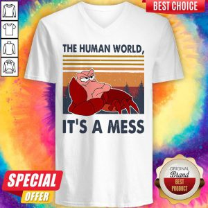 The Human World It's A Mess Vintage V-neck