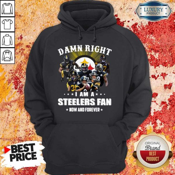 Damn Right I Am A Steelers Fan Now And Forever Hoodie