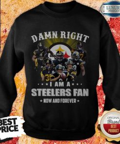 Damn Right I Am A Steelers Fan Now And Forever SweaDamn Right I Am A Steelers Fan Now And Forever Sweatshirttshirt