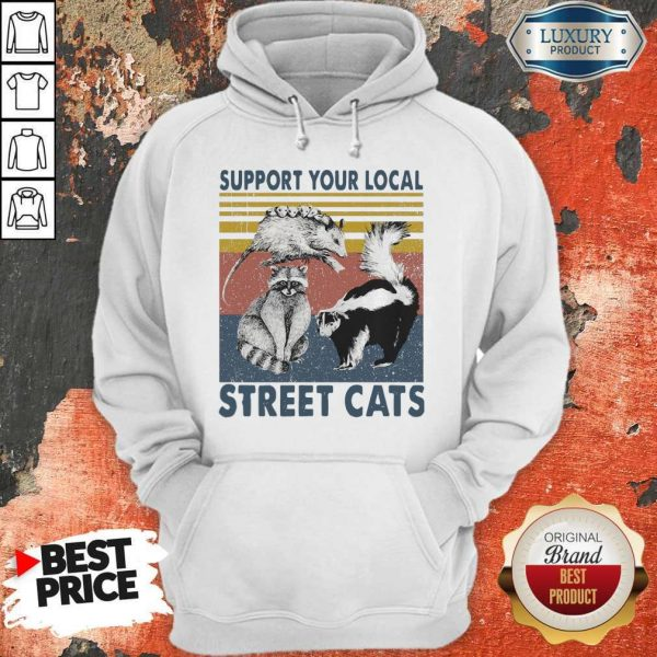 Funny Racoon Support Your Local Street Cats Hoodie