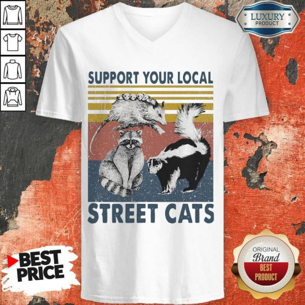 Funny Racoon Support Your Local Street Cats V-neck