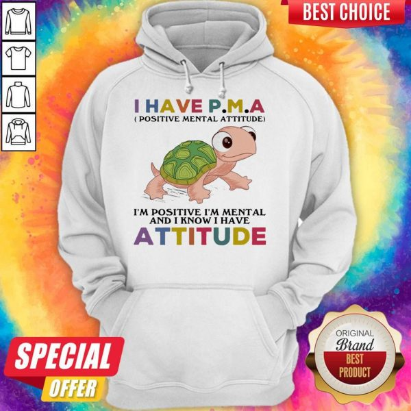Funny Turtle I Have P M A I'M Positive I'M Mentally And I Know I Have Attitude Hoodie