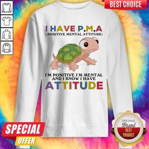 Funny Turtle I Have P M A I'M Positive I'M Mentally And I Know I Have Attitude Sweatshirt