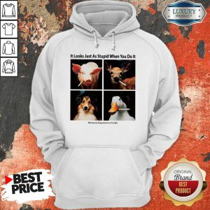 Good Animals with Cigars It Looks Just As Stupid When You Do It Hoodie