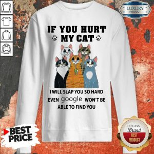 Nice If You Hurt My Cat I Will Slap You So Hard Even Google Won't Be Able To Find You Sweatshirt