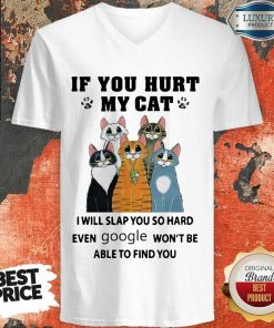 Nice If You Hurt My Cat I Will Slap You So Hard Even Google Won't Be Able To Find You V-neck