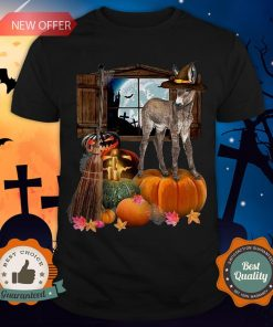 Funny Doneky Witch Halloween Shirt