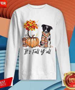 It's Fall Y'all Border Collie Dog Halloween Sweatshirt