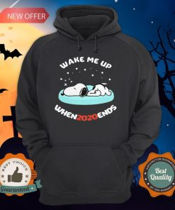 Snoopy Wake Me Up When 2020 Ends Hoodie