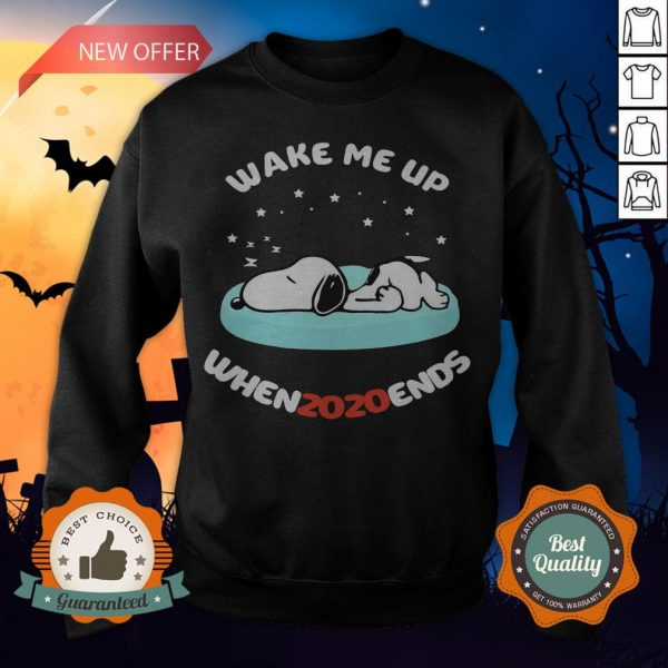 Snoopy Wake Me Up When 2020 Ends Sweatshirt