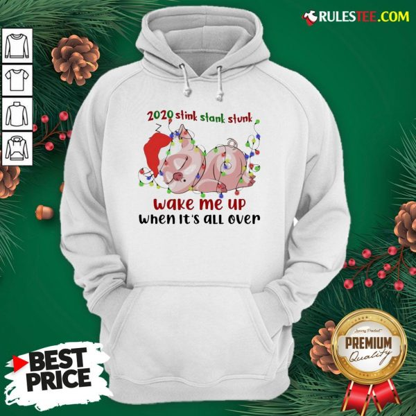 Hot Pig Sleep 2020 Stink Stank Stunk Wake Me Up When It's All Ver Christmas Hoodie - Design By Rulestee.com