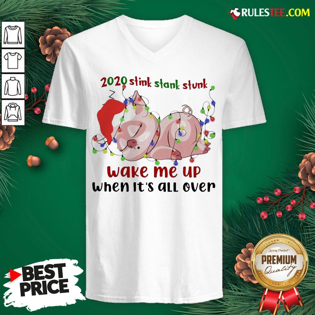 Hot Pig Sleep 2020 Stink Stank Stunk Wake Me Up When It's All Ver Christmas V-neck - Design By Rulestee.com