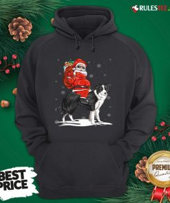 Official Santa Claus Riding Border Collie Christmas 2020 Hoodie - Design By Rulestee.com