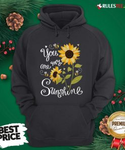 Original Sunflower You Are My Sunshine Hoodie - Design By Rulestee.com