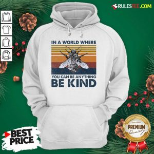In A World Where You Can Be Anything Be Kind Vintage Hoodie - Design By Rulestee.com