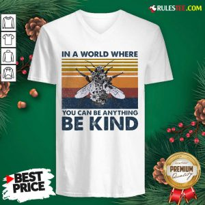In A World Where You Can Be Anything Be Kind Vintage V-neck - Design By Rulestee.com