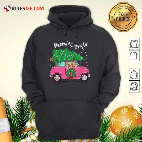 Merry And Bright Pitbull Dog Ugly Christmas Hoodie - Design By Rulestee.com