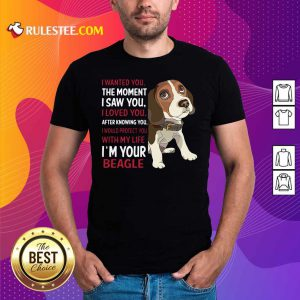 Beagle Wanted I Wanted You The Moment I Saw You I Loved You After Knowing You Shirt - Design By Rulestee.com