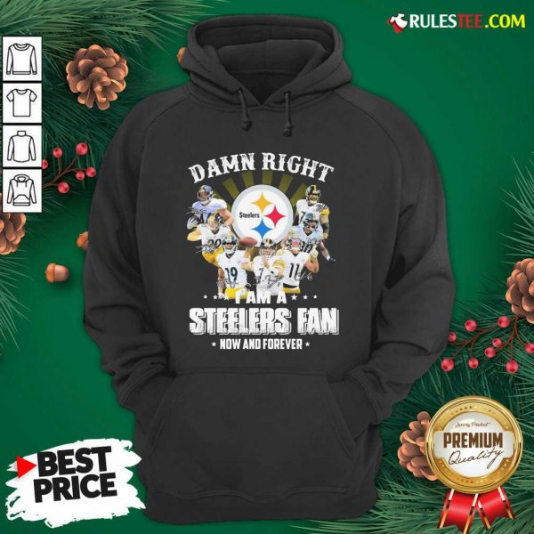 Good So Damn Right I Am A Pittsburgh Steelers Fan Now And Forever Signature Hoodie - Design By Rulestee.com