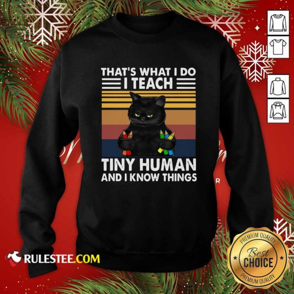 Black Cat Thats What I Do I Teach Tiny Human And I Know Things Vintage Sweatshirt - Design By Rulestee.com
