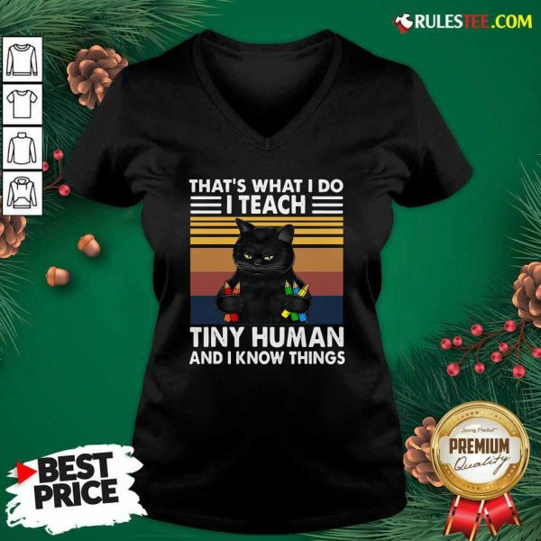 Black Cat Thats What I Do I Teach Tiny Human And I Know Things Vintage V-neck - Design By Rulestee.com
