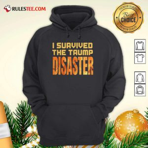 I Survived The Trump Disaster Election Hoodie - Design By Rulestee.com