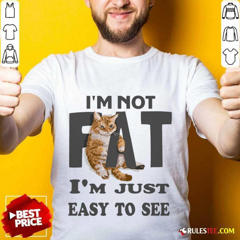 Cat I'm Not Fat I'm Just Easy To See Shirt