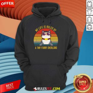 Cat My Life Is Ruled By A Tiny Furry Overlord Vintage Hoodie