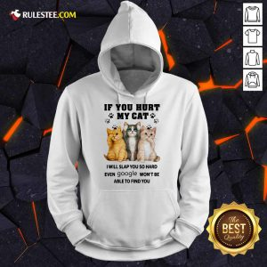 If You Hurt My Cat I Will Slap You Hoodie